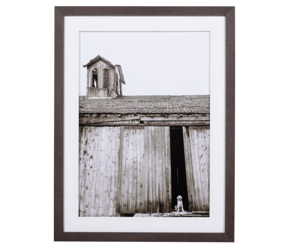 Barn With Dog
